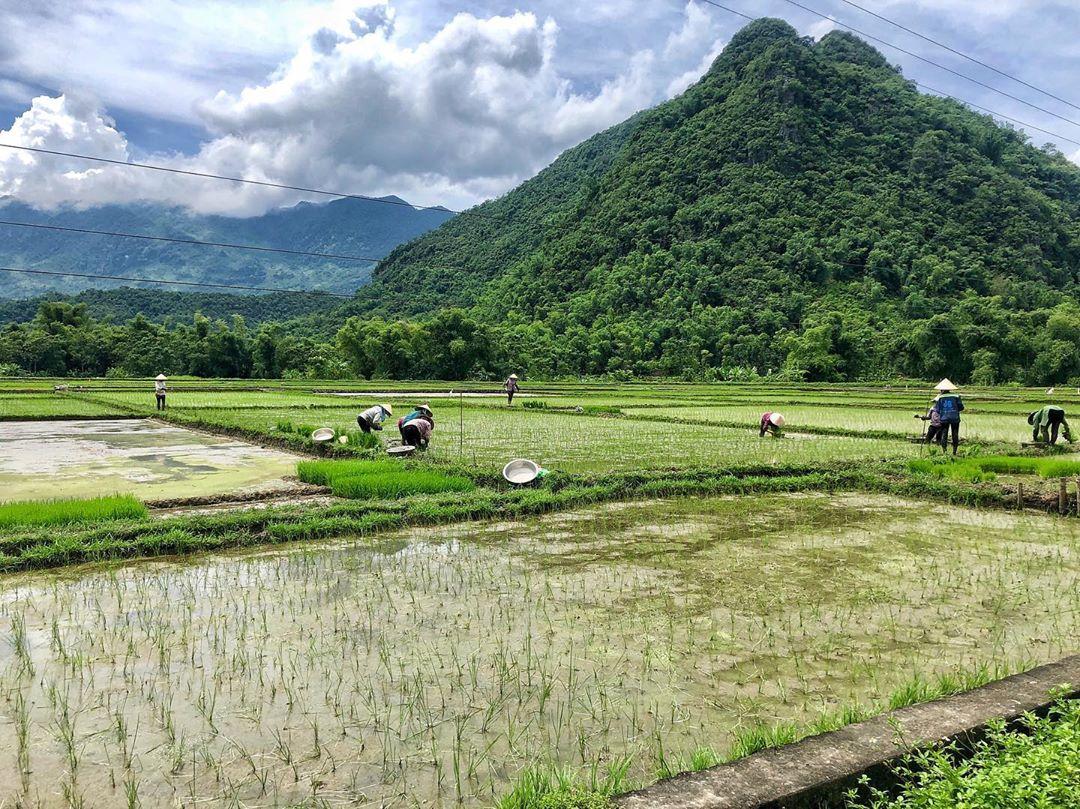 Bản làng cổ Mai Châu - Hòa Bình